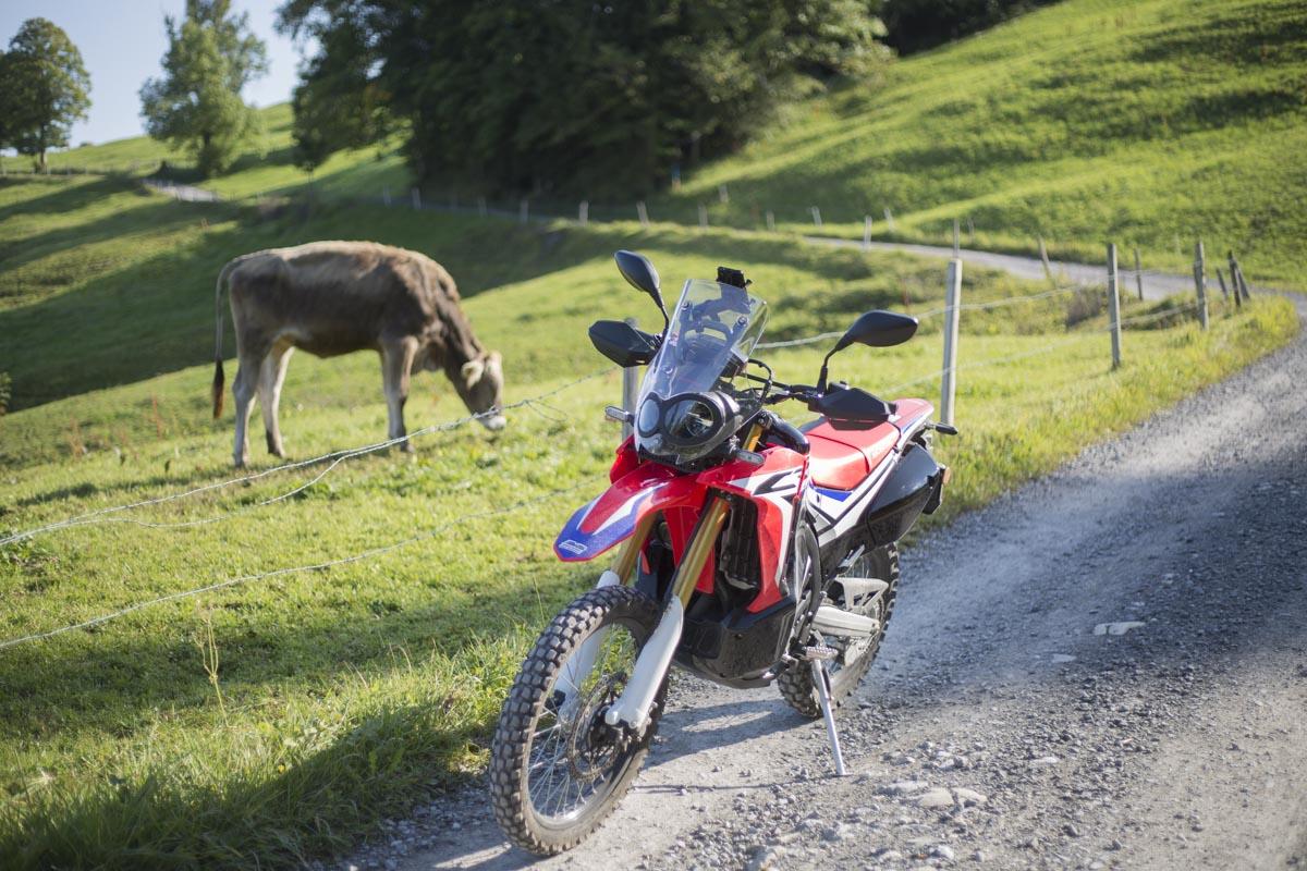 Honda CRF250 Rally, die ersten 1000 km