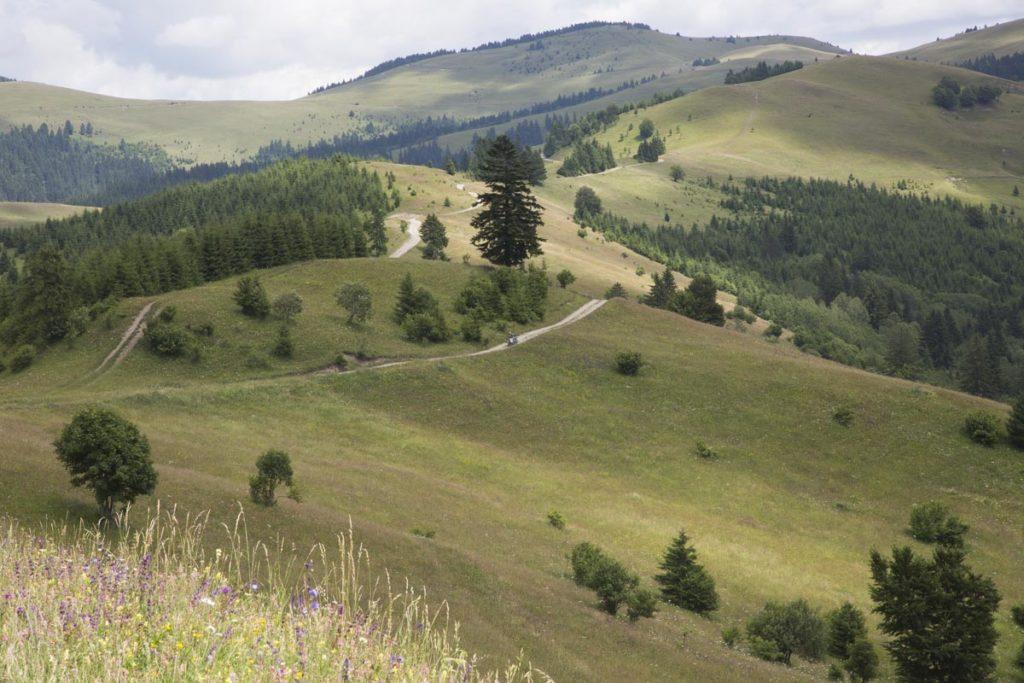 Unterwegs in den Bergen von Rumänien