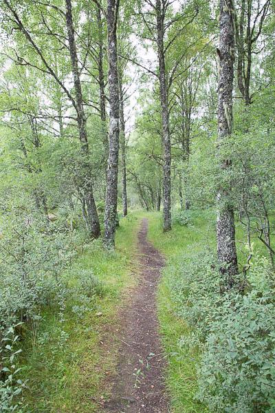 Glen Affric, Wanderweg