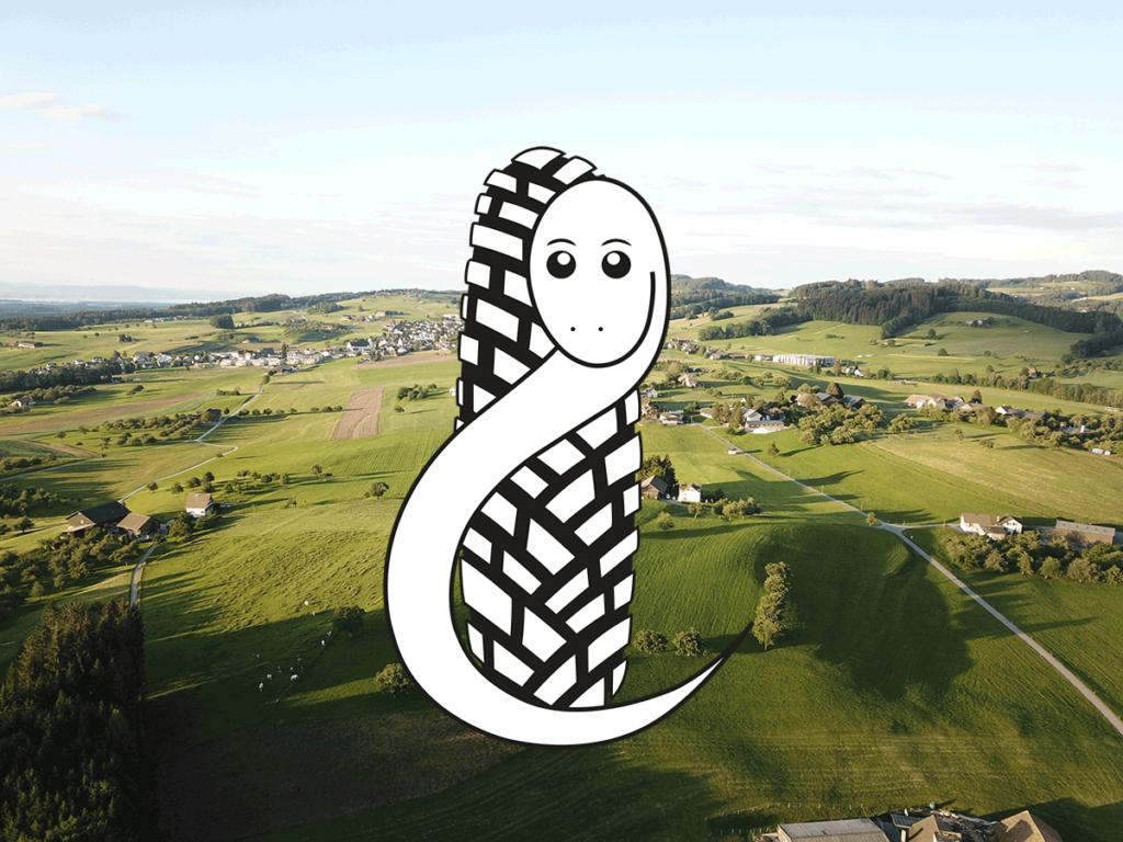 neues Logo von blindschleiche.ch ab 2021