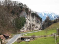 Hirschsprung im Rheintal